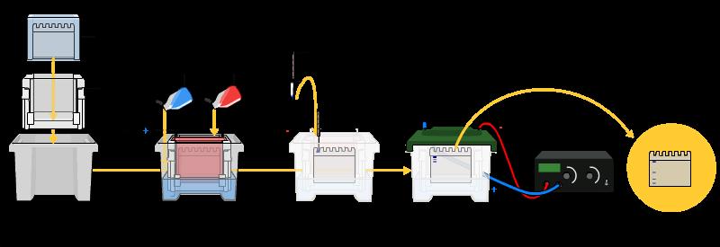 SDS-PAGE电泳实验流程图