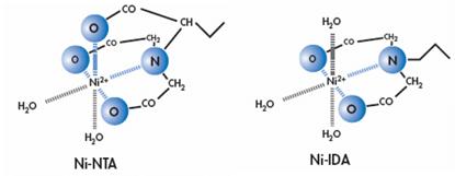 Ni-IDA和Ni-NTA结构图