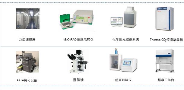 蛋白表达技术平台设施