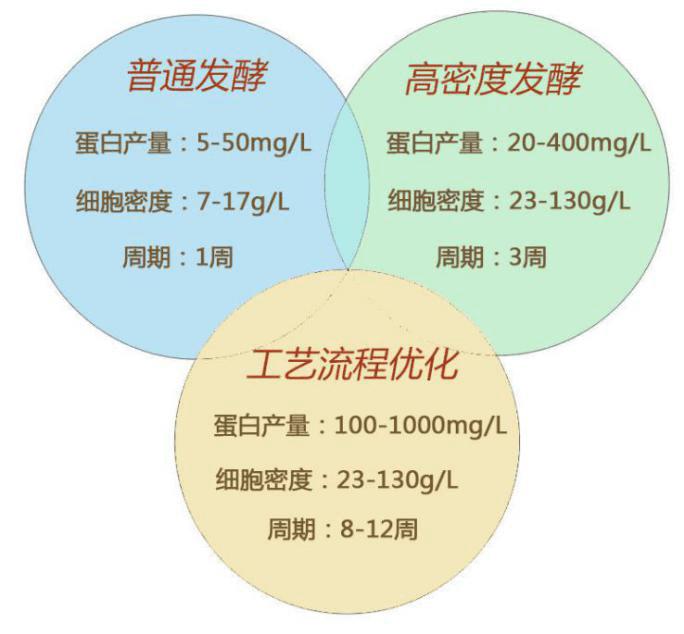 蛋白发酵技术对比