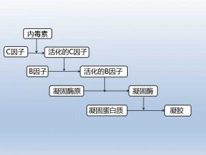 内毒素检测流程图