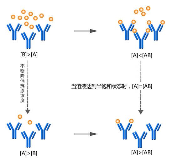 竞争ELISA测抗体亲和力原理